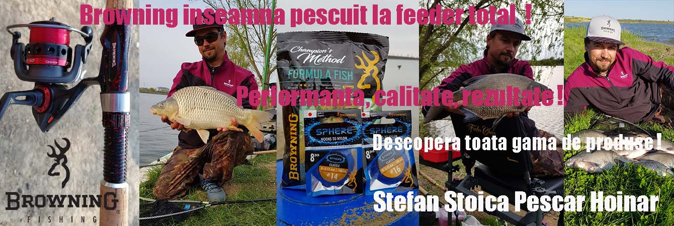 browning_stefan_stoica