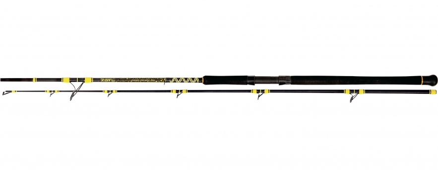 Lanseta Black Cat Passion Pro DX Boat 2,50m 400g